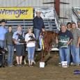 Chapman Reining Horses would like to congratulate the following trainers on their placings at the NERHA Super Slide In show: Martin Audet was the Champion in the Open Level1 and […]
