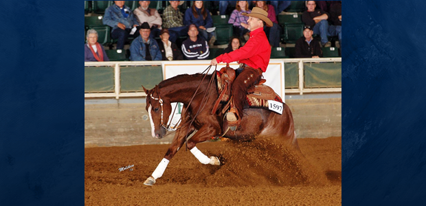 Chapman Reining Horses would like to congratulate Craig Stonesifer and his horseChoc Full of Pep. The team won the Level 2 and Level 3 divisions of the ABI Non-Pro Futurity […]
