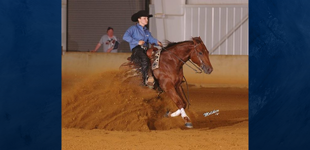 Congratulations to Maya Stessin and Whiz Bang Spark who were Reserve Champions both days at the Carolina Fall Classic in the Limited Open! Chapman Reining Horses would also like to congratulate Martin […]