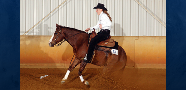 Chapman Reining Horses would like to welcome trainer Breann Huyett to the farm! Breann is a 2013 graduate of Delaware State University, where she competed on the women's equestrian team from […]