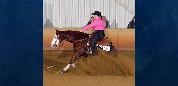 Chapman Reining Horses would like to congratulate Dr. Megan Snyder and GunsmokesHickoryChic,  Champion Non Pro Level II in the EPRHA High Hopes Farm Derby at the Fall Spooktacular show.