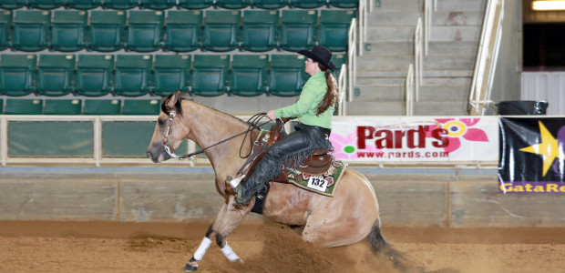 Congratulations to Mandy Yarbrough riding Tinsel and Spark for 3rd place in the SERHA Main Event Futurity! This was the first time in the showpen for the 3 year old buckskin mare owned […]