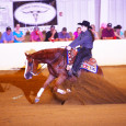 For Sale: 2012 Chestnut Gelding by Lil Ruff Rider out of Chic With Chex. Top derby prospect. He has NRHA earnings of $277 with very limited showing. His dam is an […]
