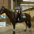 Congratulations to Johnny Richards on being the 2015 Pennsylvania State 4-H Horse Show Novice Reining Champion!