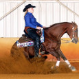 Chapman Reining Horses would like to congratulate Anne Beneville of Rhode Island on her purchase ofBrennas Apple Pucker, a 2010 mare by Brennas Red Pine Jac.