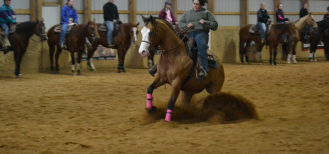 Chapman Reining Horses would like tothank all the participants in the 2nd Annual Spin Into Spring Reining Clinic! Good luck in the upcoming show year!