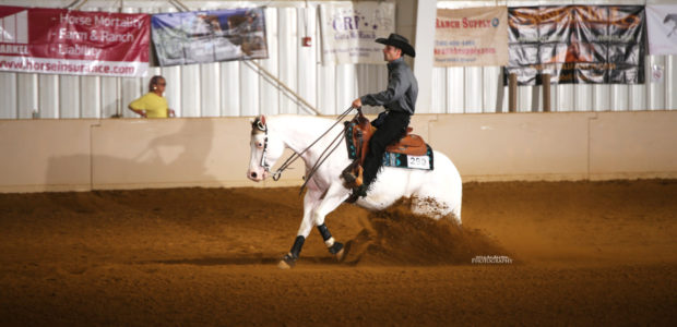 Chapman Reining Horses would like to congratulate the following people on a very successful weekend at EPRHA: Megan Snyder riding Lil Miss Red Pine: Co-Champion Green horse on Friday, Won […]