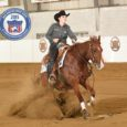 For Sale: Legendary Customwhiz- 4 yr old, 16.1 hand gelding, sired by Custom Legend. NRHA money earner with very limited showing. Big, pretty, and an outstanding mover! A reiner suitable for […]