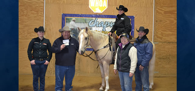 Chapman Reining Horses would like to congratulate Allison Reigle riding MrBHBoomernic, who qualified for the NRHA Green Reiner Achievement Award Jacket and Belt Buckle