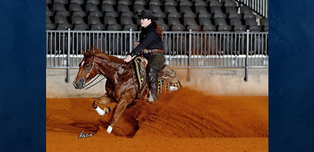 Congratulations to Mandy Yarbrough and Gunners Shining Star, Champion in the Open Level 2 and tied for 3rd in the Open Levels 3 and 4 at the 2019 Carolina Classic. […]