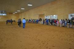 2013 MD 4-H Horse Jamboree Field Trip
