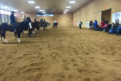 2015 March Reining Clinic