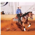 Chapman Reining Horses would like to congratulate the fallowing trainers of their placings at the EPRHA Reining Thunder show Maya Stessin was reserve champion in both the rookie professional and […]