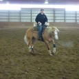 Chapman Reining Horses would like to congratulate Donny, Dottie Panuska and Karen Goloboski on their purchase of Bueno Boomer Star. Look for this new team next year. Picture ofKaren Goloboski […]