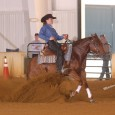 Chapman Reining Horses would like to congratulate the following trainers on their wins at the EPRHA Slide Into Summer show: Martin Audet was Co-Champion in the Intermediate Open on Friday […]