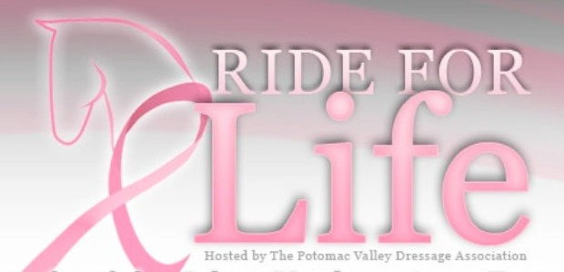 Chapman Reining Horses supports the 2012 PVDA Ride for Life. Come see us perform at the Dancing Horse Challenge Saturday night June 23! Find more information at: www.pvdarideforlife.org