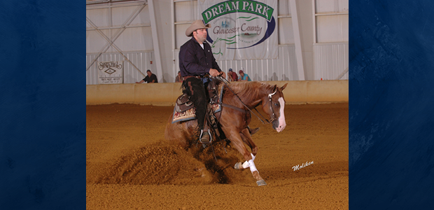 Chapman Reining Horses would like to congratulate Grant Williams on the purchase of R Shooting Star!