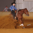 15 yr old sorrel mare with LTE of over $18k, by Million Dollar sire Whizard Jac, and by an NRHA money earning mare by Shining Spark. Broodmare sound only. She […]