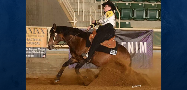 Chapman Reining Horses would like to congratulate Dana Grafft on Commandalena for their wins in the Green Reiner classes at the Virginia Reining Horse Association Memorial Day Classic May 23-25! Dana and Commandalena are […]