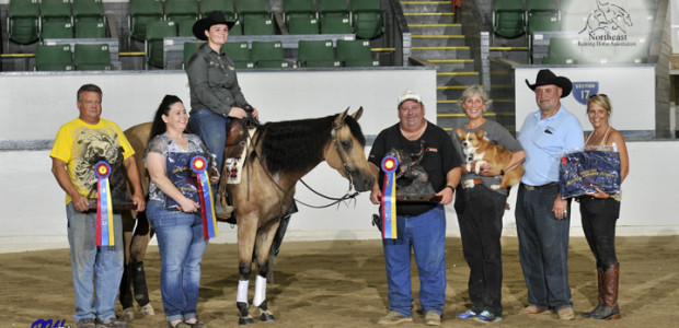 Congratulations to trainer Amanda Yarbrough onTinsel and Spark, a home-bred mare raised and trained by Rising Star Farm and Chapman Reining Horses, forwinning the Santa Hill Ranch Showdown Futurity, Levels […]