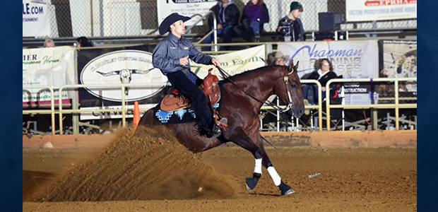 Eric Priest is a graduate of the University of Findlay with a Bachelor of Science in western equestrian studies and equine business management. Eric interned for two summers and on […]