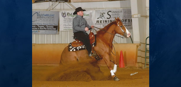 "Chapman Reining Horses getting it done! Congratulations to Shannon Snyder AKA ""The Woodbine Kid"" showing Fancy Dual Train to a third place finish Limited Non Pro 2017 NRHA World Standings. […]"