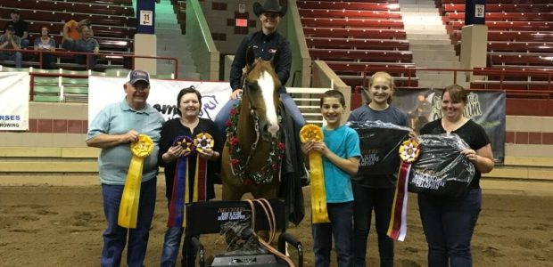 Congratulations to Fight On State, owned by Don and Evelyn Burgy, and ridden by Amanda Yarbrough on winning the Novice Horse Open Derby at the CNYRHA – Central New York […]