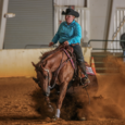 Brennas Red Pine Jac x Rock N Roll Olena (Chocolate Chic Olena) 2011 Sorrel Mare $7200+ LTE, 5 panel negative, full set clean radiographs available 2016 Carolina Classic Level 1 […]