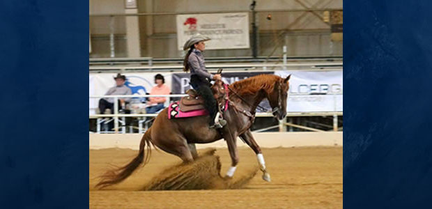 Chapman Champions Strike Again…Brianna Villegas, riding her mare Conquista Annie, is the NRHA Northeast Affiliate Short Stirrup Champion in her first year showing!