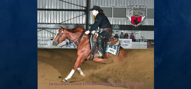Chics Gunnatrashya ridden and trained by Amanda Yarbrough was Reserve Champion in the Developing Horse Futurity at the Buckeye Reining Classic. Chics Gunnatrashya was bred and raised by Holly Bray […]