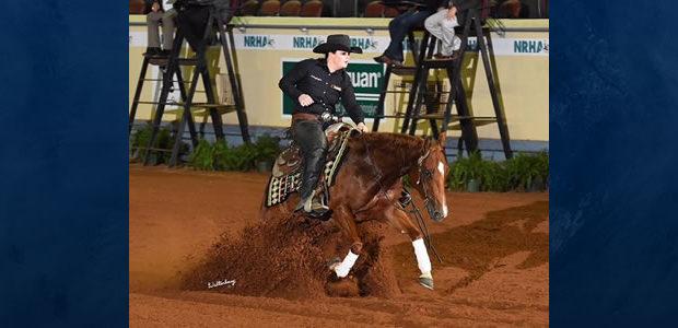Congratulations to Gunners Shining Star, 2018 NRHA Futurity Semi-finalist! Bred, raised and trained at Rising Star Farm!! Related posts: Reserve Champion Developing Horse Futurity! Santa Hill Ranch Showdown Futurity Winner! […]