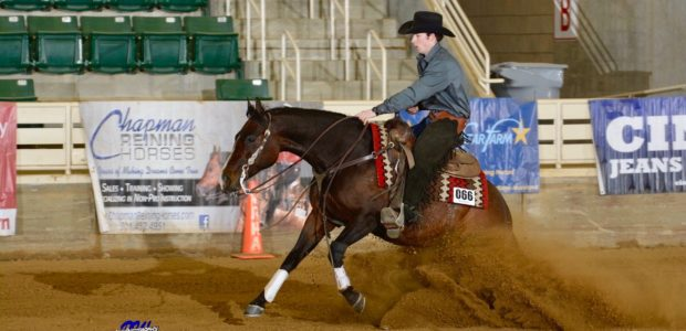 Congratulations to Austin Morris showing Brindolena, owned by Elizabeth Richards of Columbia, MD.High Point Rookie Professional at the VRHA March Into Spring Show. Related posts: 2018 Top Ten Rookie Professional! […]
