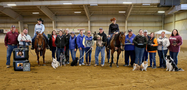 Chapman Non Pros make a clean sweep of the EPRHAFall Spooktacular! Tracey Showman riding A Chic SurprizewasChampionin the7-UPNon Pro Derbyand Kim Wolfe riding RC Fancy ChicwasReserve Champion inLevels 4 and […]