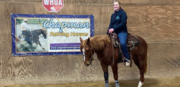 Congratulations Rosanne and Maria Richards on the purchase of three year old stallion Flinnagain. Looking forward to Non-Pro Futurities!